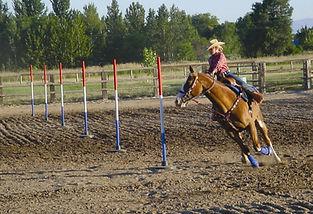 horsepole.jpg