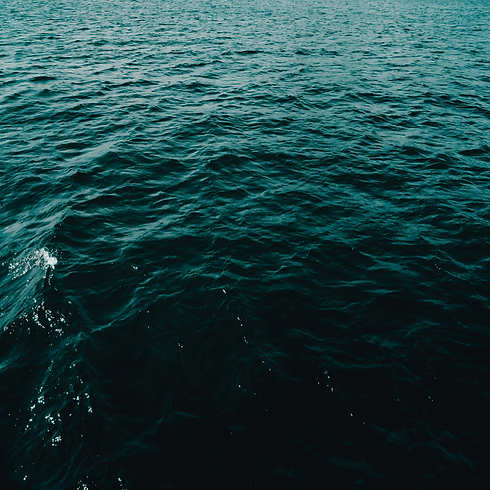 Sea (1).png