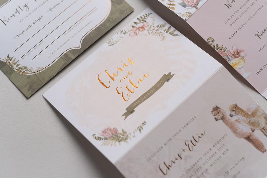 C & E invitations