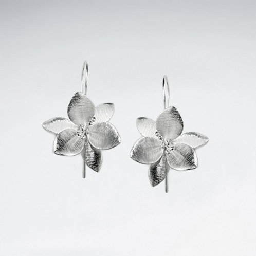 Clematis Flower Earrings - Brushed Silver