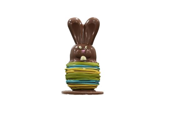 Huevo Conejo Colores