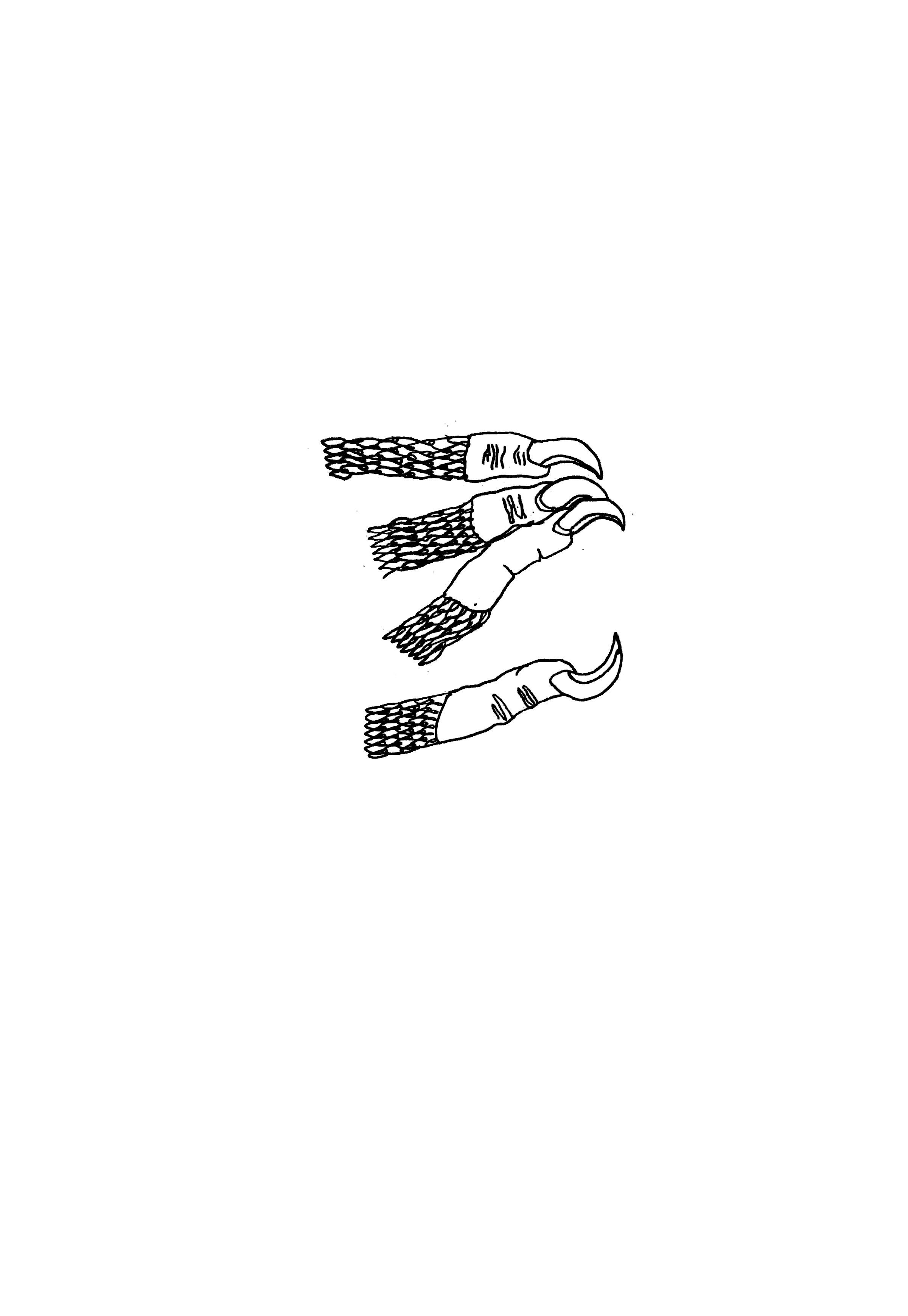 doigtsgriffes