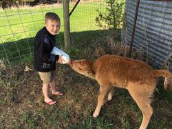feeding baby Stevie