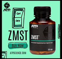 zmst.png