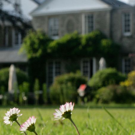 The Whitehouse, Chillington - Blissful Country Retreat