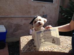 Vinny Graduates