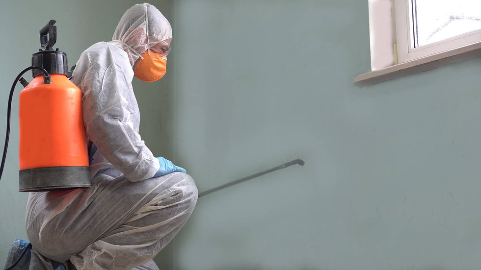 Covid-19-worker-disinfecting-Adobe-Stock