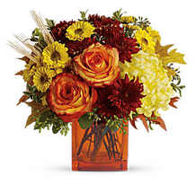 Autumn Expressions $39.95.png