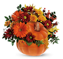 Country Pumpkin $52.95.png