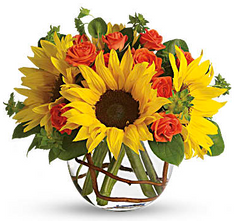 Sunny Sunflowers $57.95.png