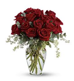 16 Premium Red Roses