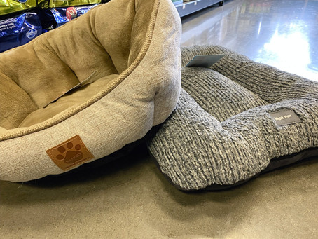 Cozy Pet Beds For Winter And All Year Round