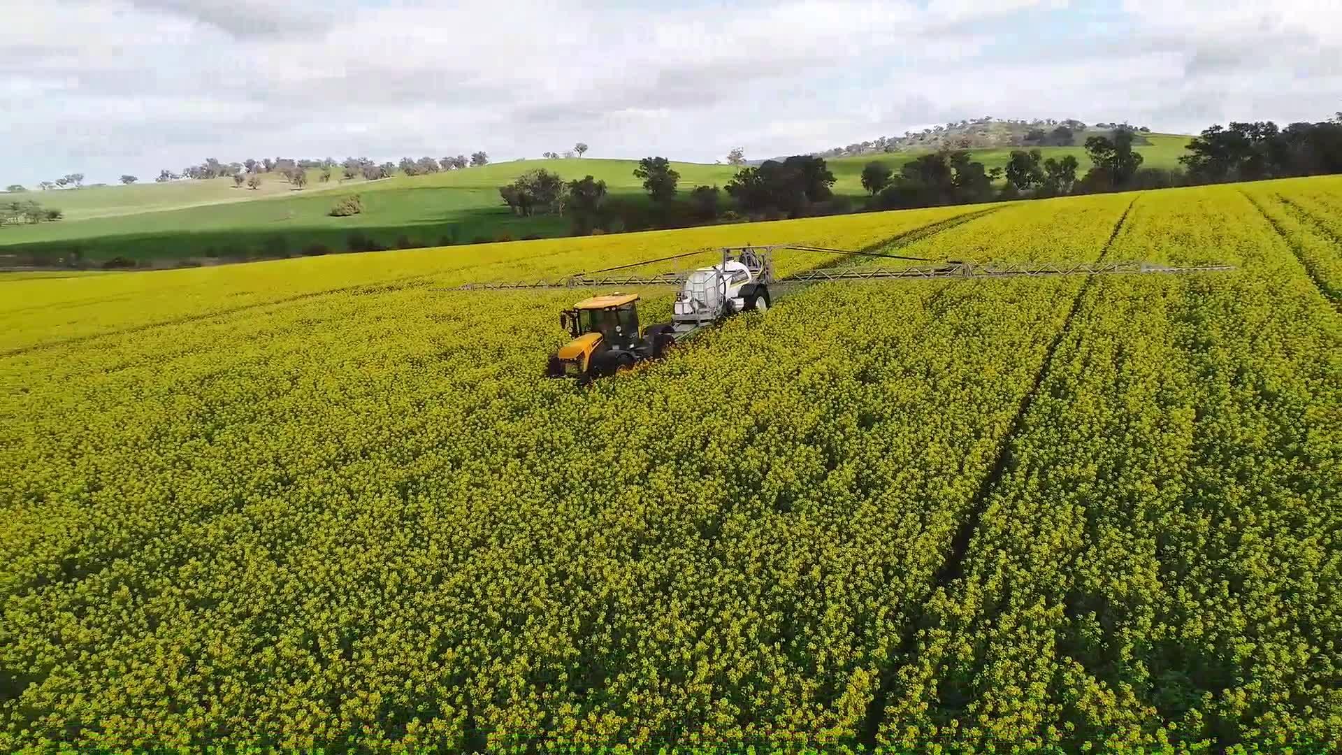 JTA 6000L 36M Spraying Canola Crop