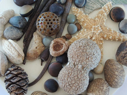 Seashore Collection