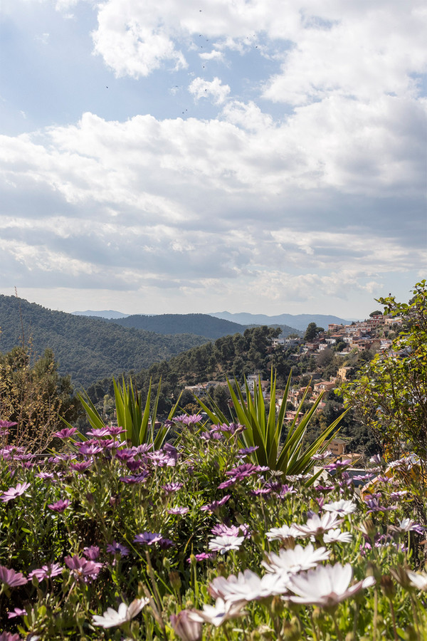 vista-collserola-homestaging-sebastien-r
