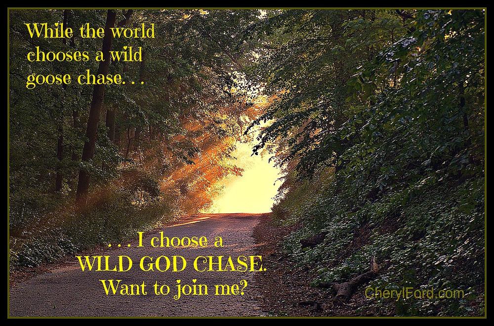 Wild God Chase.jpg