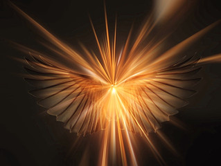 The Angels Among Us