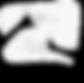 NDT Logo_final (1)-01_edited_edited.png