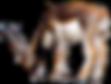 kissclipart-antelope-transparent-clipart