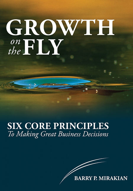 Growth on the Fly, Small Business growth and recovery