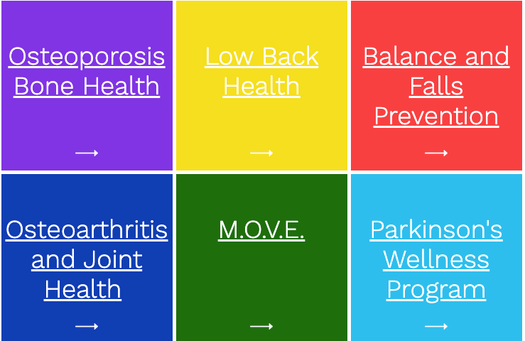 Parkinson's Osteoporosis Low Back Health Wellness Balance Falls Prevention Wellness Fitness Virtual Online Training