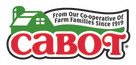 cabot_logo_396x192_300_cmyk.jpg