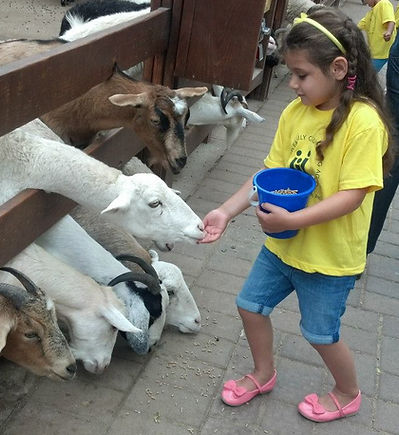 Youth and Family Counselig Agency of Oyster Bay-East Norwich Field Trip at the petting zoo