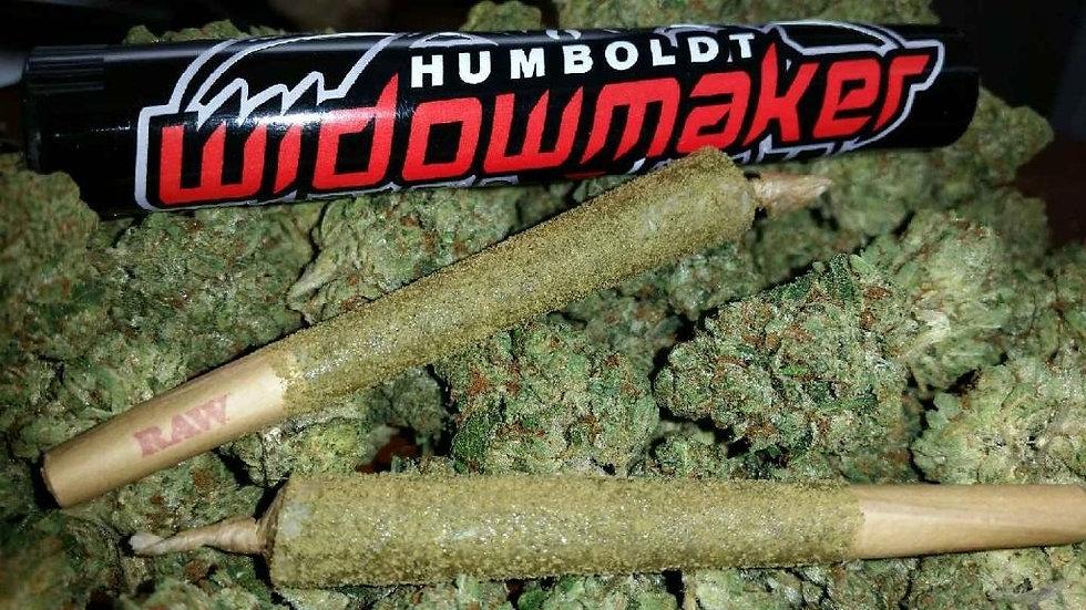 Humboldt Widowmaker™ XL, bx of 25