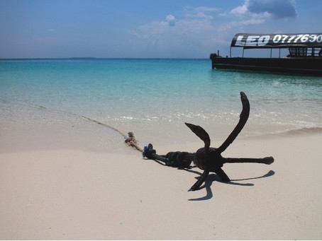 Choosing the right boat anchors