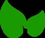 Fresh N Kleen logo