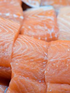 Salmon 6.jpg