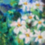 Daisy Doodle.jpg