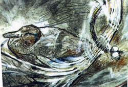 Duck & Dragonfly (charcoal/crayon)