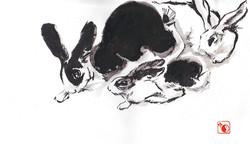 Bunnies (Chinese brush)
