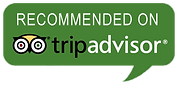 Island Charters on Trip Advisor