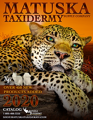 2020CatalogCoverLeopard_FINALCOPY.png