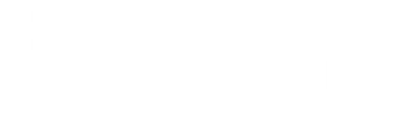 theVISIONFUND_logo_WHITE.png