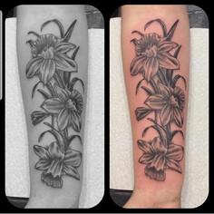 Daffodills1.jpg