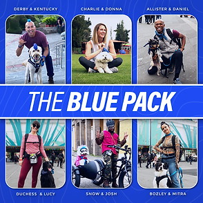 The Blue Pack