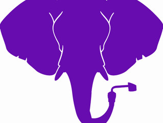 Purple Elephant Cannabis Review