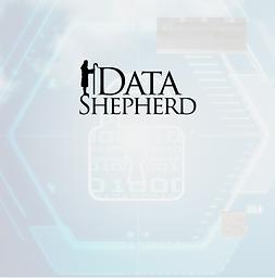 DataShepherd_IT.png