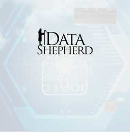 DataShepherd_IT.png