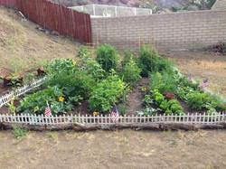 JR - Food & Garden
