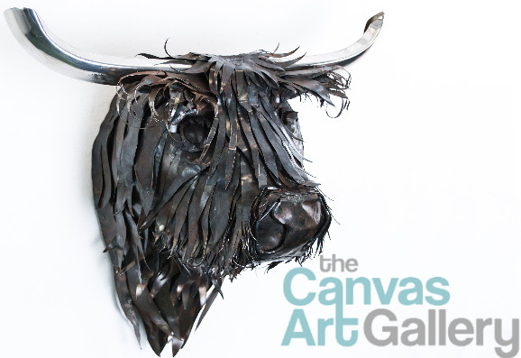 Fergus, the Highland Cow now at Canvas Art Gallery