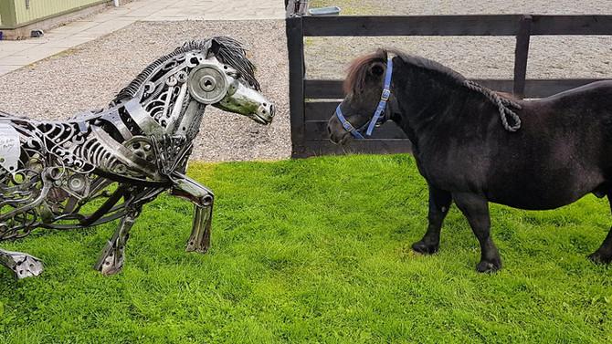 Magnus meets Boris