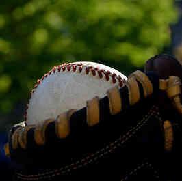 Fantasy Baseball Dynasty