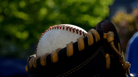 2021 Baseball/Softball