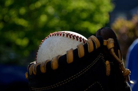 스포츠토토 야구