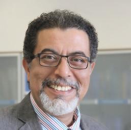 Professor Dr Ashraf Salama