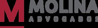 Molina Logo PNG.png